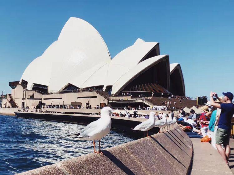 """澳大利亚首选的""""4大新工科"""",人才短缺近千万!毕业高薪!轻松移民!"""