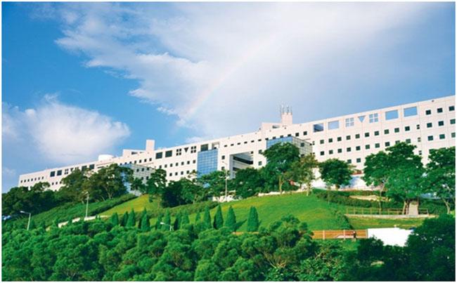 香港科技大学最好专业排名